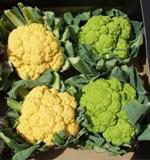 Fruits, Vegetables & Fresh Herbs